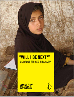 "Amnesty International report, ""Will I be next?"""