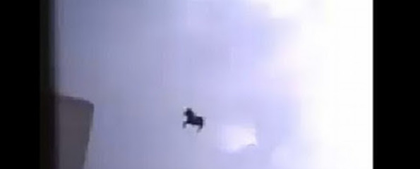 Flying horse in Saudi Arabia